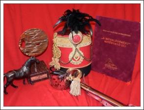 Kitüntető cím a Magyar Kultúra Napja alkalmából